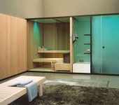 Combined sauna and steam system